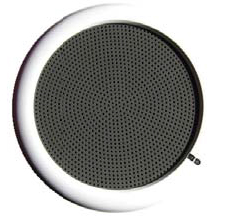 Blaze Point 2 way PA speaker